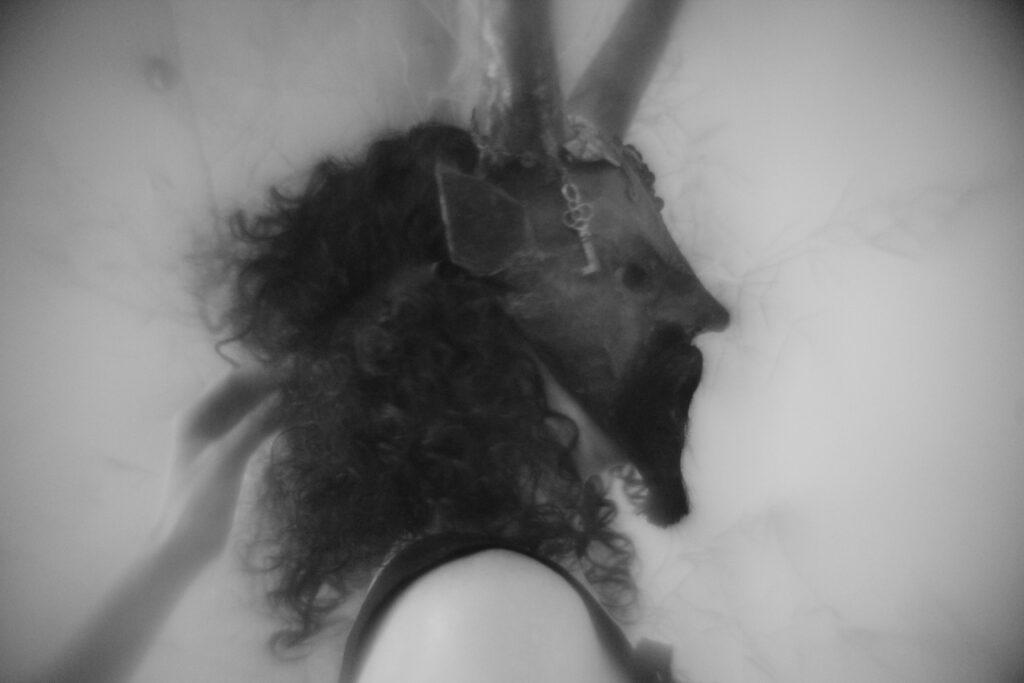 masked performer